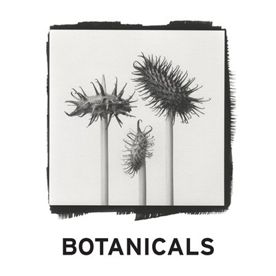 Botanicals, Exhibition Catalogue