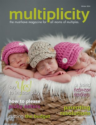 Multiplicity - Winter 2014
