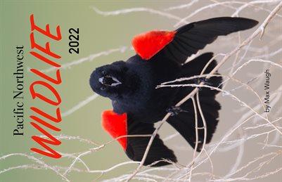 2022 Pacific Northwest Wildlife Calendar