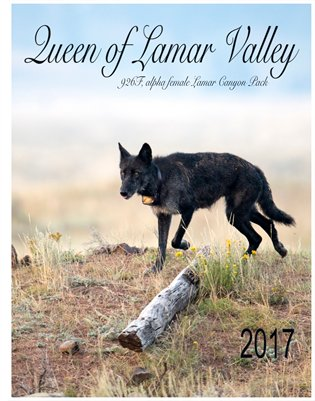 The Queen of Lamar Valley 2017 Calendar