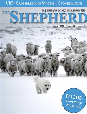 The Shepherd January 2018