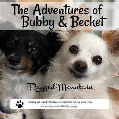 Adventures of Bubby & Becket to Ragged Mountain