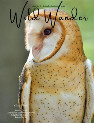 WW mag Issue 6 Animals