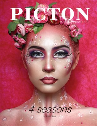Picton Magazine December 2018 N11, Cover 1