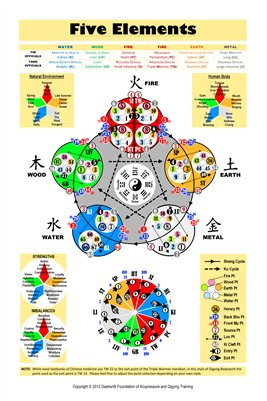 Five Element Acupuncture Poster (Double Sided)