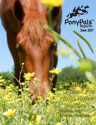 June 2017 Pony Pals Magazine - Vol. 7 #1