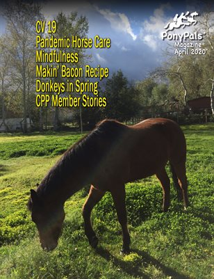 April 2020 Pony Pals Magazine - Vol9.#11