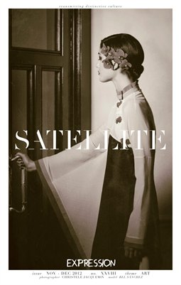 Satellite Nov-Dec 2012 Art Issue No XXVIII