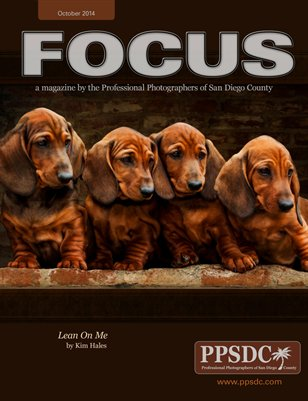 FOCUS October 2014