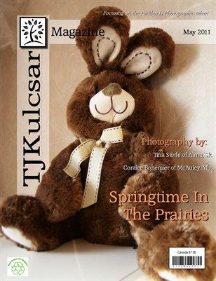 May 2011 - Vol.1,No.2