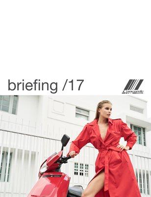 Concorde briefing /17