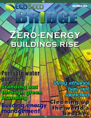 Zero-energy Buildings Rise