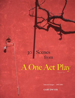 30 scenes from A One Act Play - Vol. 1