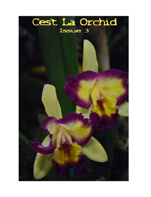 C'est la Orchid Issue Three