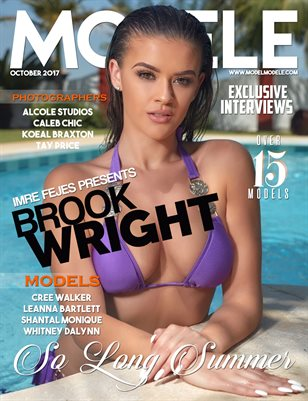 MODEL MODELE PRESENTS SO LONG SUMMER (BROOK WRIGHT)