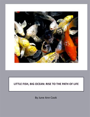 Little Fish, Big Ocean: Rise To The Path Of Life