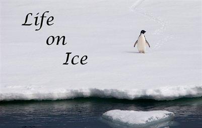 Life on Ice