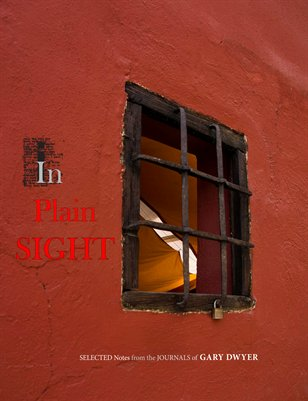 In Plain Sight - The journal notes of Gary Dwyer