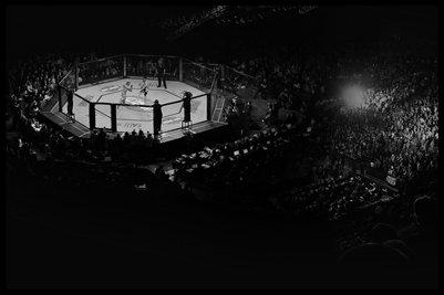UFC Octagon View 12x18 Poster