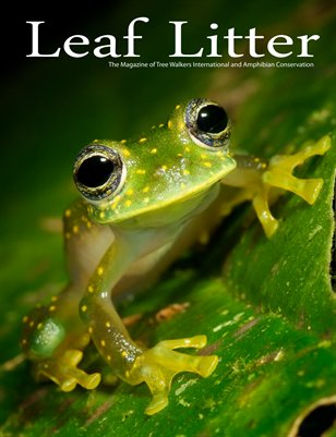 Leaf Litter (Vol. 3, Issue 1) The Panama Issue
