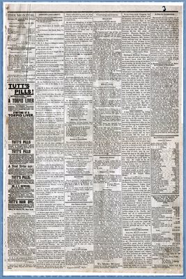 (PAGES 3-4) FEBRUARY 01, 1879 MAYFIELD MONITOR NEWSPAPER, MAYFIELD, GRAVES COUNTY, KENTUCKY
