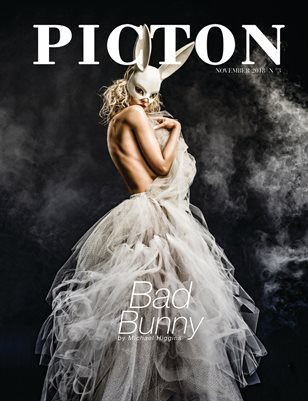 Picton Magazine November 2018 N3, Cover 1