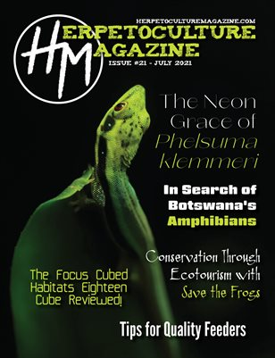 Issue #21 - July 2021