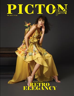 Picton Magazine November  2019 N346 GOLD Cover 1