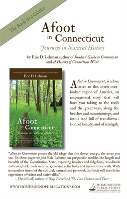 Afoot in Connecticut | Book at a Glance