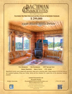 1556 Black Hills Drive