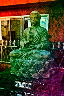 Buddha of Venice