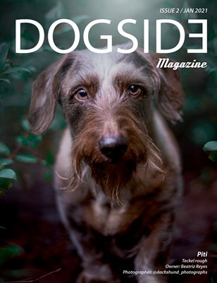 Dogside 2