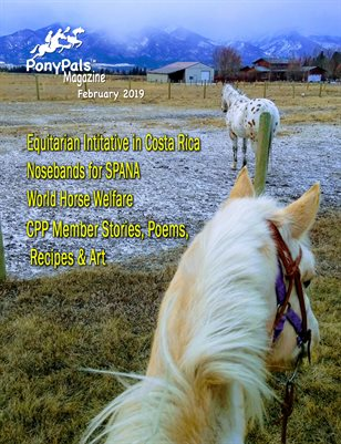 February 2019 Pony Pals Magazine - Vol.8 #9