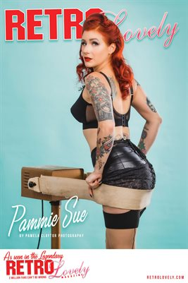 Pammie Sue Cover Poster