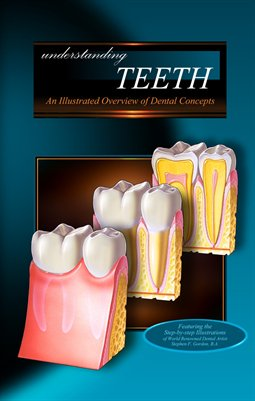 Understanding TEETH - An Illustrated Overview of Dental Concepts
