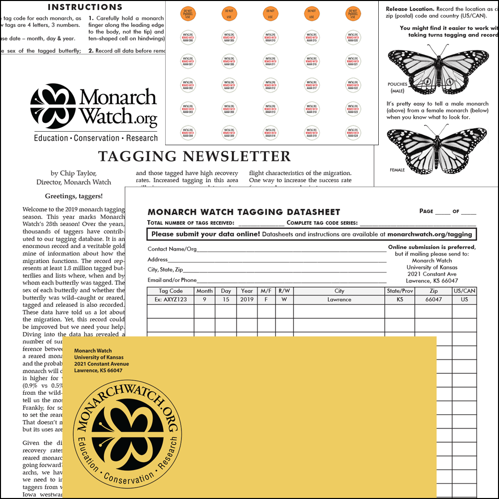Monarch Watch Tagging Kit how to tag monarch butterflies, monarch tagging, monarch butterfly tagging kit, monarch migration tagging, monarch migration tracking
