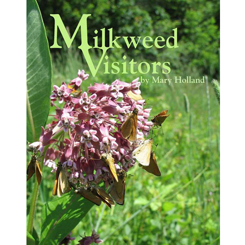 Milkweed Visitors by Mary Holland