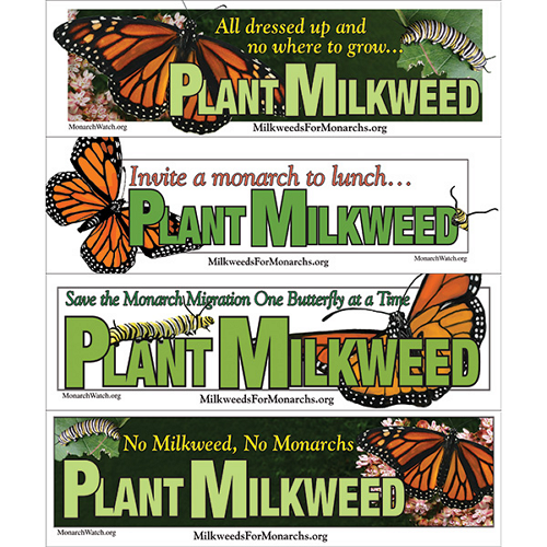 Monarch Watch Plant Milkweed Bumper Stickers