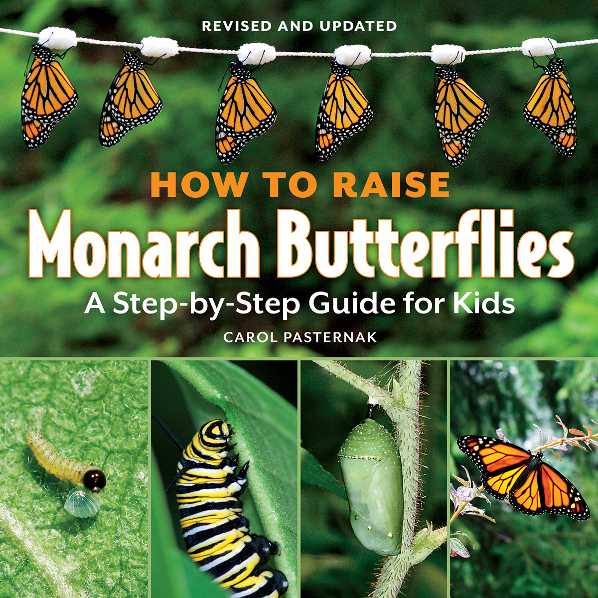 How to Raise Monarch Butterflies: <br>A Step-by-Step Guide for Kids monarch butterfly book, book about monarch butterflies, teacher%27s guide to monarch butterflies, monarch butterfly lessons, classroom monarch butterflies