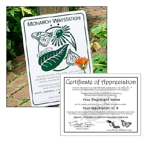 Monarch Watch Monarch Waystation Certificate and Sign Bundle