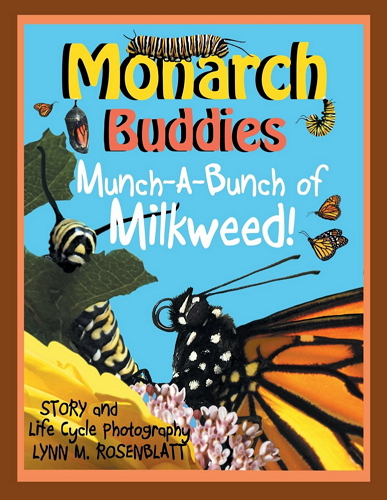 Monarch Buddies: Munch-A-Bunch of Milkweed!