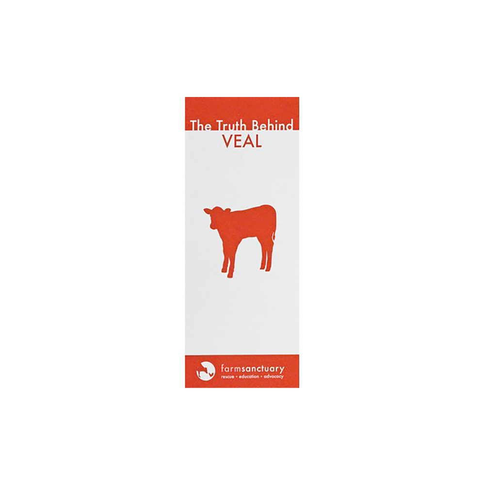The Truth Behind Veal Brochure