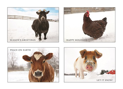 2013 Sanctuary Holiday Cards - 200111-13