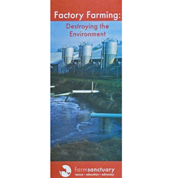 Factory Farming: Destroying the Environment