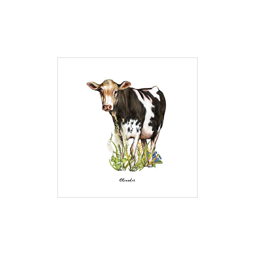 Farm Sanctuary Animal Ambassador Note Cards
