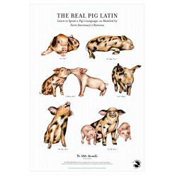 Pig Latin Fine Art Print