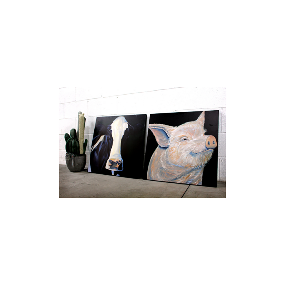 Farm Sanctuary Jay Johnny Canvas Prints - Large