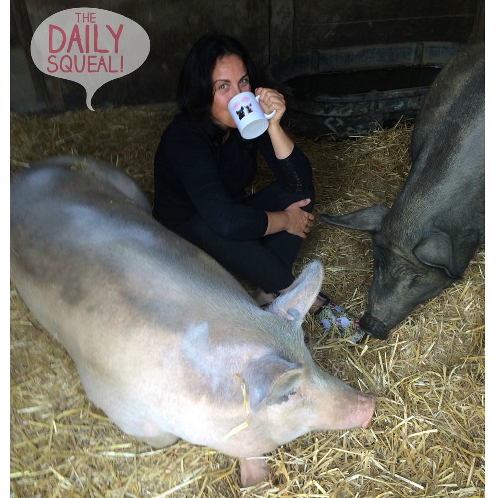 Farm Sanctuary Anna and Maybelle Mug - The Daily Squeal