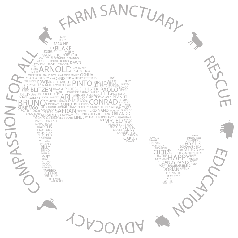 Farm Sanctuary I Am Someone Tee Design