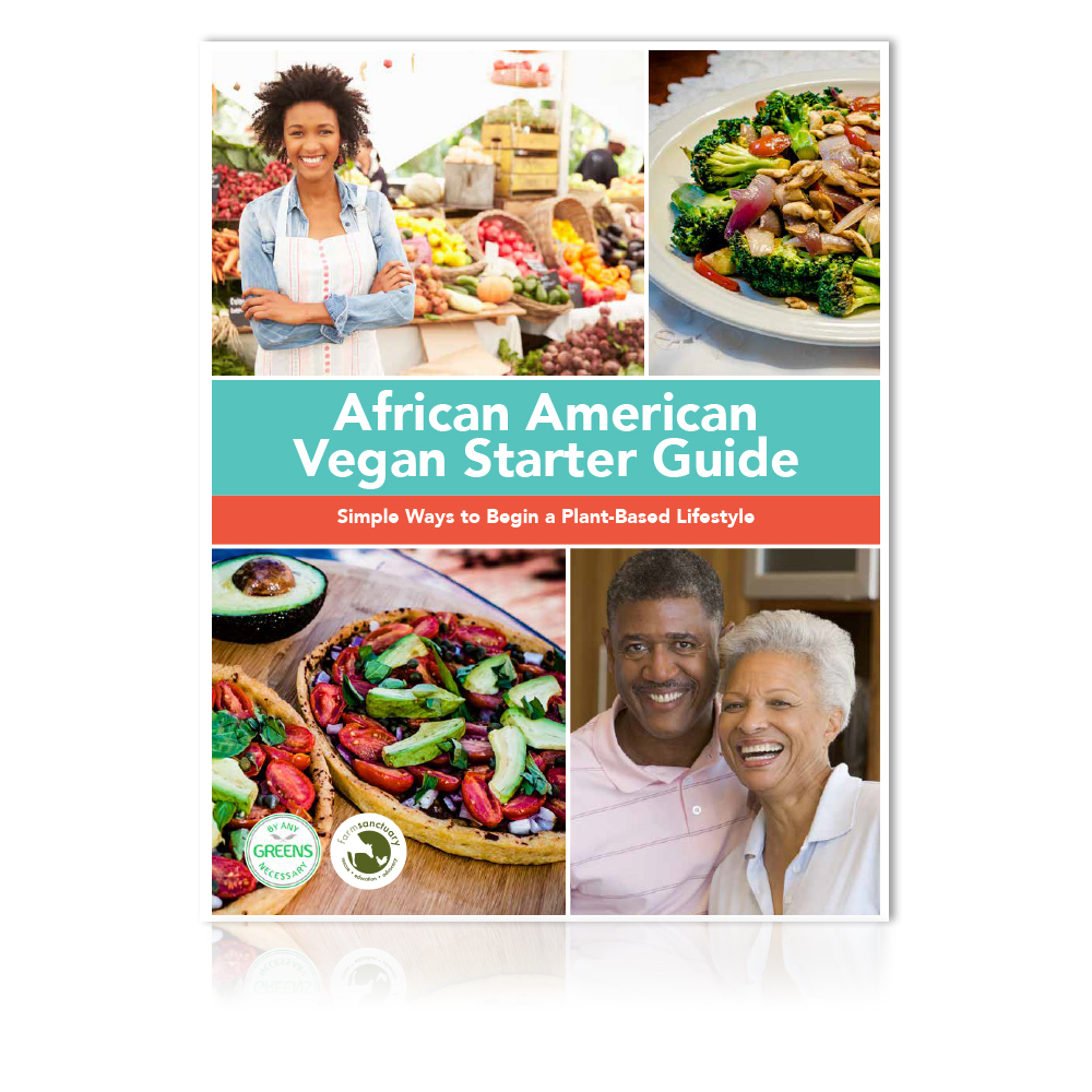 African American Vegan Starter Guide  african-american vegan recipes, black vegan recipe guide, affordable vegan meals, african american vegan history